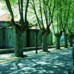 CIN_Cambre_Igrexa_de_Sta._Maria_absides_Adolfo_Enriquez