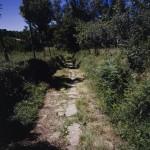 CVP_Silleda_Trasfontao_Camino_ManiMoreton